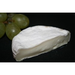 Schafcamembert / weißes Schaf
